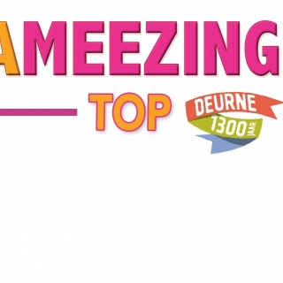 Logo ameezing top1300 4kant